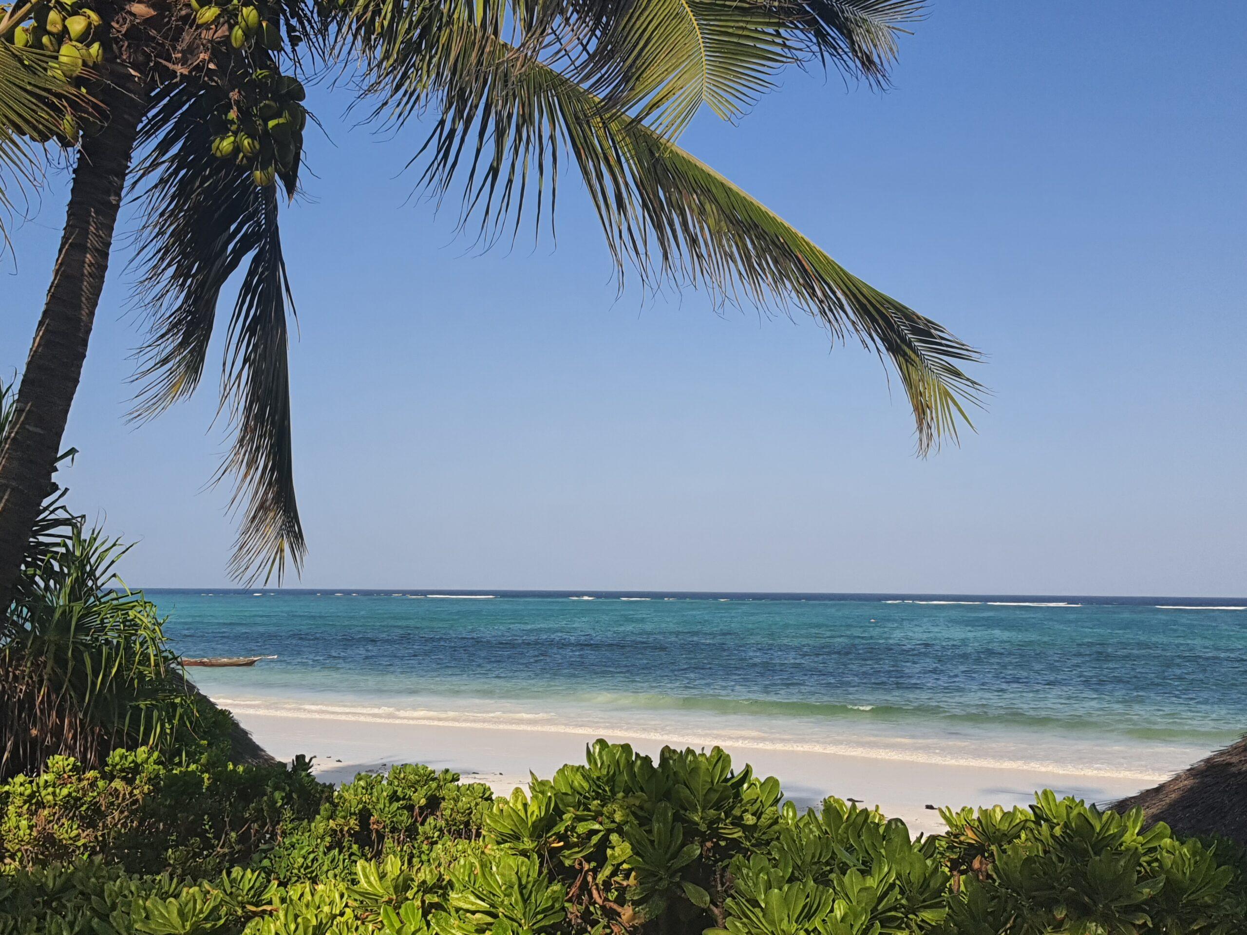 Zanzibar, l'île aux épices